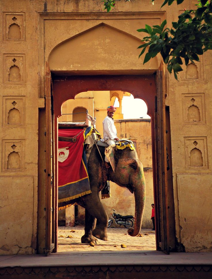 Viaje a Rajasthan