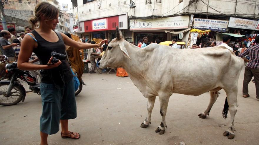 Preguntas frecuentes sobre los viajes a India - India's Invitation