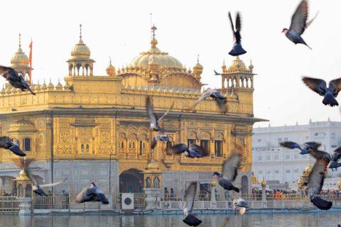 Trianguló de Oro con Amritsar
