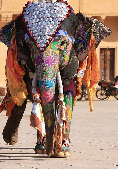 Viaje Mejor de Norte de la India