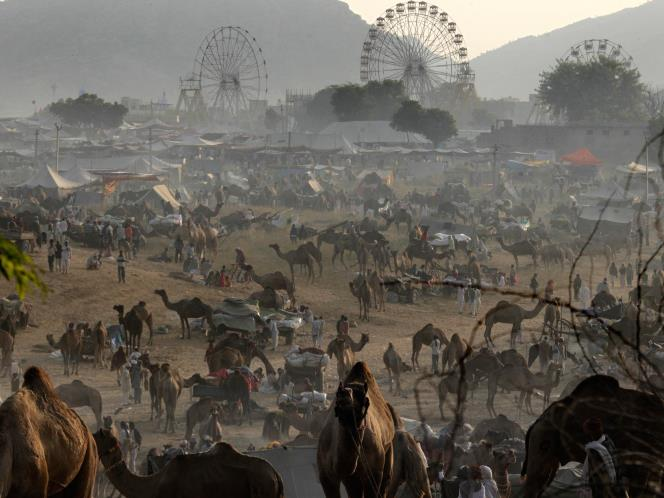 Viaje a India con Fundación Vicente Ferrer