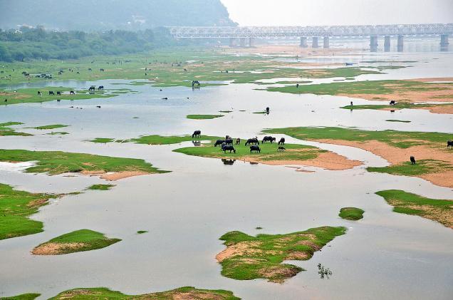 India clima en agosto