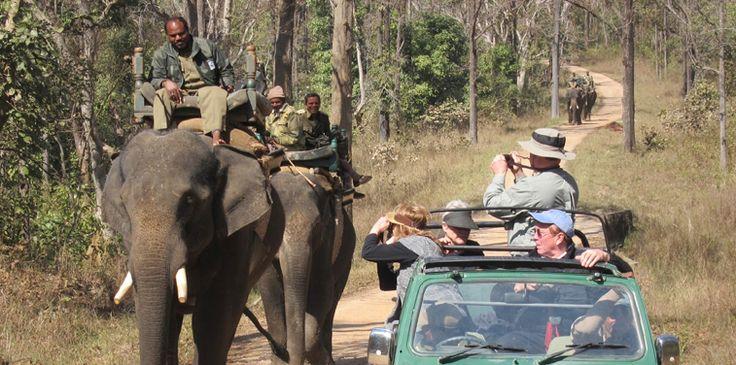 Parques Nacionales de la India