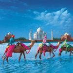 14 Las mejores razones para viajar