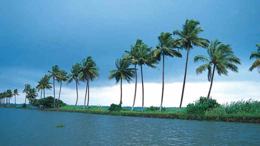 Kerala en Viaje por India