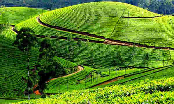 Hermosos lugares para ver en India