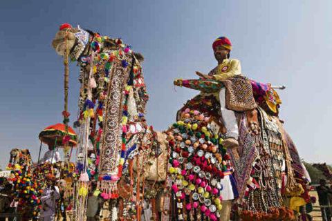 Las mejores cosas para hacer en Rajasthan