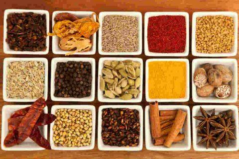 Los 10 mejores platos de Rajasthan