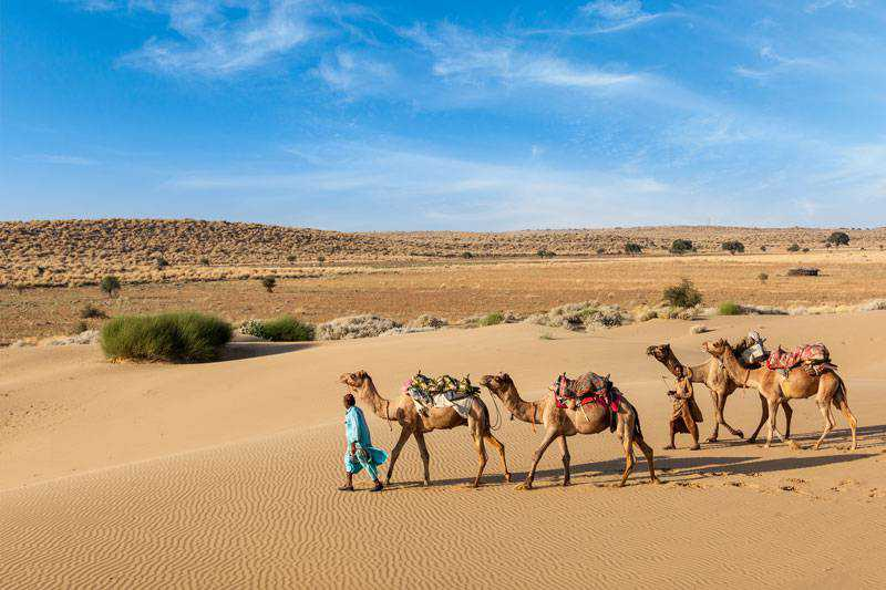 Los tesoros de Rajasthan
