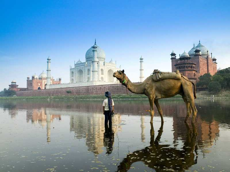 Lo que no traer a la India