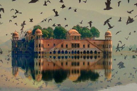 Viajar a la India con familia