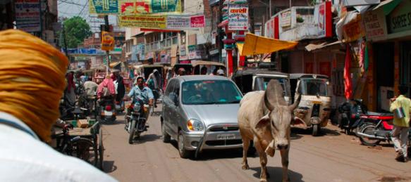 Viajar a India Una Aventura 1